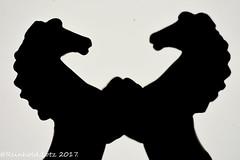 "Horses (Explored 2017-06-05) (Reinhold.Lotz) Tags: installation macro mondays ""silhouette"" macromondays kirtorf hessen deutschland de"