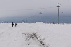 Camino blanco (Mauro Esains) Tags: nieve paisaje caminando caminar niña mujer frío invierno electricidad postes snow landscape walking walk girl woman cold winter electricity posts