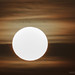 _MG_9971 (2) (mircea vatamanu) Tags: sky birds cloud thesun