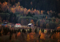 Autumn in the Mountains (Linnea from Sweden) Tags: canon eos 1100d efs 55250mm 456 is ii autumn nature mountain