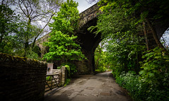 under the bridge (Phil-Gregory) Tags: bridge hathersage green lines road tokina 1120mm 1120mmf28 1120mmproatx 1120 nikon d7200 peakdistict village national nature nationalpark naturalphotography naturalworld natural naturephotography countryside colour color scenicsnotjustlandscapes gate wideangle ultrawide wild wide
