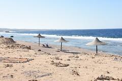 DSC_0182 (russellfenton) Tags: egypt marsaalam nikon nikon7200 7200 corayabeach steigenberger snorkelling sea boat