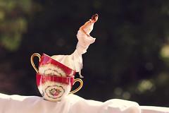 Milk cream (stefaniebst) Tags: diagonale diagonal tea thé tasse cup selfportrait autoportrait milk lait photoshop photography conceptualphotography conceptphoto fineart fineartphotography crazy wonderland