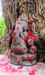 IMG_48282 (Manveer Jarosz) Tags: auroville bharat ganapati ganesha ganpati hindustan india jai solitudefarm southindia tamilnadu wwoof worldwideopportunitiesonorganicfarms dye farm murti pooja powder red ritual rural solitude stone tree village