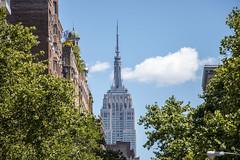Empire state building from washington park (Ceren's Daydreams) Tags: washingtonpark empirestatebuilding city newyork