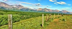 rural Alberta, Canada ICE(5)1796-1800 (photos by Bob V) Tags: mountain rockies rockymountains canadianrockies prairie panorama mountainpanorama alberta albertacanada