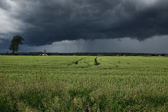 Summer Storm Front (Brian 104) Tags: clouds storm field angry rain summer grey