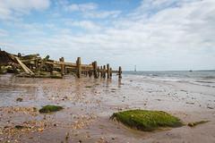 b e a c h w o o d. (NVOXVII) Tags: groyne woodwork beach lowdown seascape portsmouth southsea sky coast canon eos m10 mirrorless landscape hampshire seafront