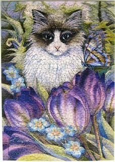 Tulip Cat (Jody Bergsma)