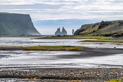 _DSC1559.jpg (David Hamments) Tags: roadtoreykjavik blackbeach reynisfjara dyrholaey ngc reynisdrangar black beach basalt columns sea stacks icelandday5