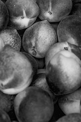 The Fruits Of Our Labour (SNAPShots by PJW *Join LNP*) Tags: street streetphotography people portrait ottawa outside life fun noiretblanc blackandwhite blackwhite noire bnw bw monochrome lines details photojournalism portraiture light shadows sunlight flickr fruit food peaches