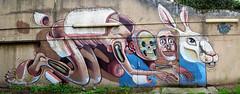 Nychos (HBA_JIJO) Tags: streetart urban graffiti vitry vitrysurseine art france hbajijo wall mur painting peinture murale paris94 spray mural urbain charactere nychos anatomie lapin rabbit skull