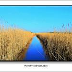 Andreas Kalbow Landschaft Fischland Darß 2017.05.20 (11) thumbnail