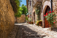 Stone buildings and cobblestone walkway (Sorin Popovich) Tags: montefalco umbria italy perugia cobblestone alley oldtown stonebuilding day steps stone wall travel europe italianvillage village