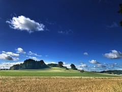 MTBTour über die schwäbische Alb zur Donau (Blende2,8) Tags: weizenfeld scheune vieh rinder wolken himmel bäume wiesen felder schwäbischealb badenwürttemberg deutschland