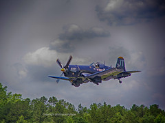 Corsair Landing (Photographybyjw) Tags: corsair landing you can see gear starting come down final set against cloudy sky shot north carolina photographybyjw approach runway rural foliage trees usa us navy