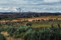 wide open spaces... (Alvin Harp) Tags: oregonscenicbyway oregon us97 biggs mounthood barrenlandscape june 2017 sonyilce7rm2 fe70200mmf28 gmoss2x barbwirefence mountainpeaks alvinharp