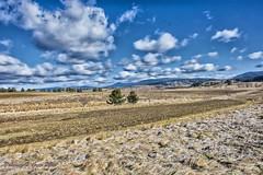 campagna silana... (DFG ph) Tags: sila campagna landscape paesaggi cielo sky calabria cosenza