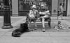 Dogs At Rest (Sherlock77 (James)) Tags: calgary downtown stephenavenue streetportrait people man woman dog bench