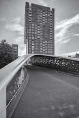 parkbrug spoor noord I (>>nicole>>) Tags: antwerpen aphogeschoolcampusspoornoord architecture architektur belgie belgien belgium bridge brücke fahrradbrücke flandern hochhaus monochrom monochrome neypartners parkspoornoord parkbrug skyscraper vlaanderen