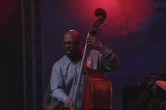 Christian McBride (MomchilAtanasoff) Tags: christian mcbride nofilter noediting canon6d 70200lis live jazz livemusic sofia bulgaria contemporarybohemians