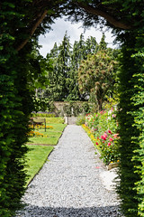 DSC_3467-7.jpg (TinaKav) Tags: summer nikon outside ireland nikond7100 scenic flowersplants outdoor leaves greenfoliage archway bray cowicklow festinalente