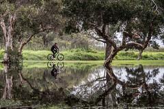 Cyclist - Herdsman Lake (garry_dav) Tags: matchpointwinner mpt558