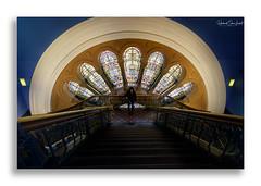 Selfie (Hooked On Light) Tags: qvb windows