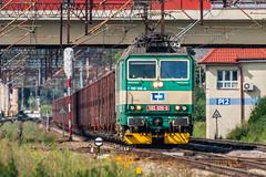 163 035-9 (arkadiusz1984) Tags: čd d29131 magistralawęglowa towarowy freighttrain skoda pelplin