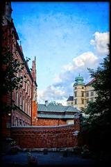 summer in Kraków [17] (kazimierz.pietruszewski) Tags: poland polska kraków cracow summer planty border vintage sky pictorial pictorialism