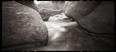Down Among the Rocks (DRCPhoto) Tags: zeroimage612b pinhole lenslessphotography kodakbw400cn film westvirginia cheatriver
