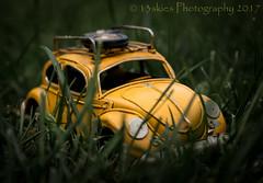 Deeply (HWW) (13skies) Tags: hww car windows grass windowwednesday light happywindowwednesday small toy metalcar vw vwbug volkswagen