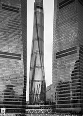 Shanghai Tower (leozhong84) Tags: chamonix045f1 schneideraposymmar56150 shanghai 4x5 film 陆家嘴 上海中心