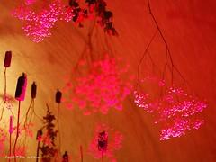 underground-tunnel-floraart_16