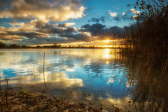 Sunset over River Elbe, Hamburg (fotobagaluten.de) Tags: sunset sonnenuntergang sun sonne river fluss elbe germany deutschland water wasser hamburg rural ländlich landscape landschaft sky himmel clouds wolken yellow gelb ufer blue blau