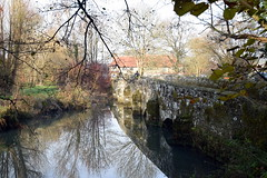 Stedham Bridge (Worthing Wanderer) Tags: westsussex sussex ipingcommon december winter frosty sunny midhurst