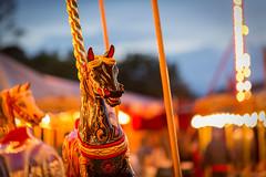 Horse (Future-Echoes) Tags: 4star 2017 bokeh carousel carterssteamfair depthoffield dof essex horse light lights maldon old ride