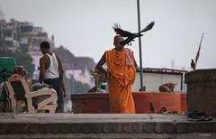 stories from the riversde (subhajyoti) Tags: varanasi riverside entangled subhajyotiroychowdhury india