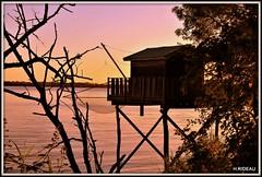 Carrelet dans le soleil couchant (Les photos de LN) Tags: carrelet cabane pêche estuaire gironde garonne aquitaine couleurs soirdété nature filet