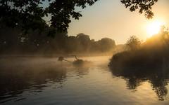 moinmoin (Florian Grundstein) Tags: mist misty foggy riverside sun sunrise morning river trees nopeople bestoftheday oberpfalz bayern nikon d610 fx