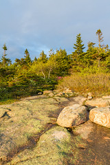Acadia National Park - Cadillac Mountain Sunset 10 (raelala) Tags: justmainethings2017 acadianationalpark barharbor cadillacmountain canon1755mm canon7d canoneos7d findyourpark goexplore goldenhour maine memorialdayweekend memorialdayweekend2017 mountdesertisland mtdesertisland nationalpark newengland photographybyrachelgreene roadtrip scenicoverlook sunset thatlalagirl thatlalagirlphotography thatlalagirlcom travel usnationalparks