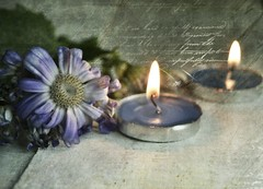 Happiness (Ayeshadows) Tags: flowers candles blue white happiness kirsten frank texture