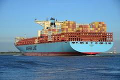 Emma Maersk DST_1442 (larry_antwerp) Tags: maersk emmamaersk container 9321483 schip ship vessel 船 船舶 אונייה जलयान 선박 کشتی سفينة schelde 斯海尔德河 スヘルデ川 스헬더 강 رود شلده سخيلده