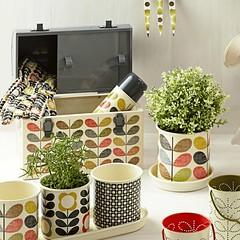 Orla Kiely Lunchbox & Flower Pots (Heath & the B.L.T. boys) Tags: orlakiely flowerpot thermos herbs