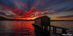 0S1A1989_90_91_92 (Steve Daggar) Tags: saratoga sunset waterscape landscape boatshed wharf jetty gosford nswcentralcoast