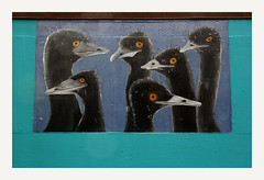Mural (R. Drozda) Tags: portland oregon pdx mural outdoor birds art drozda