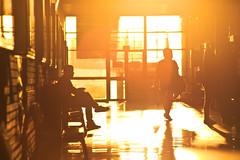 Long days at Uni (Leo Hidalgo (@yompyz)) Tags: orange sun summer vibes sunset facultad de comunicación universidad málaga uma yompyz