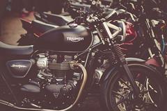 Triumph (Ederson Gomes) Tags: t2i sp roadbikes 85mm city triumph feirinha brasil beneditocalixto motocicleta metrópole motor motorcycle brazil bikes cidade pinheiros canon