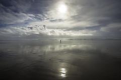 Manzanita Beach (Cameron Chanig) Tags: manzanita beach reflection oregon usa walking stormy weather