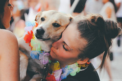 dog supporting lgbt+ rights | milano pride 2017. (Nicole Favero) Tags: verde pride lgbt loveislove amazing mine cute cool awesome forever followme supporter supporting straight love people wonderful crazy nikon nikond5000 camera effect lightroom lens vsco vscoeffect cam milano milan gaypride gay lesbian transgender bisexual asexual babdook babadook italy